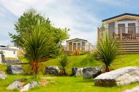 Peppermint Park Holiday Park Caravans for Hire & Touring Site, Darwlish Warren Devon